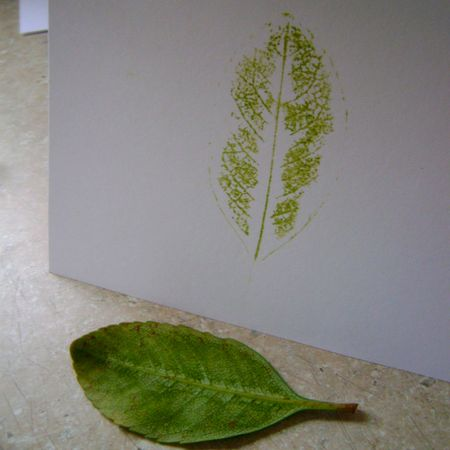 Leaf print 4